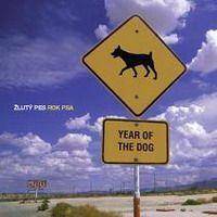 Žlutý pes - Rok psa